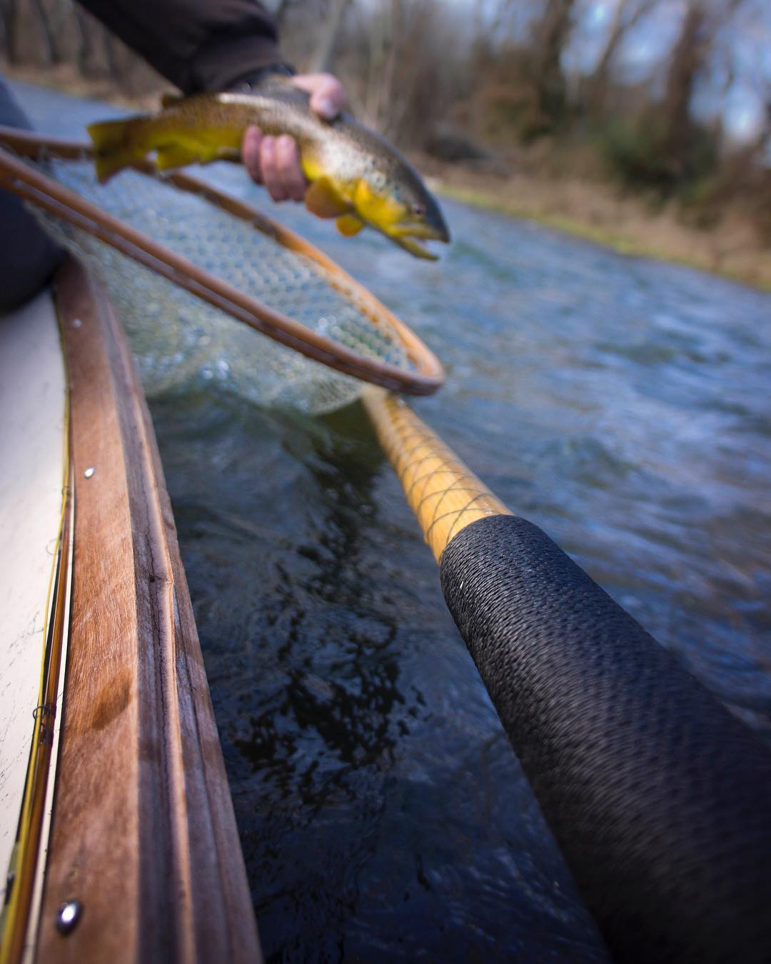 Asheville Things To Do - Asheville Fly Fishing Company - Original Photo