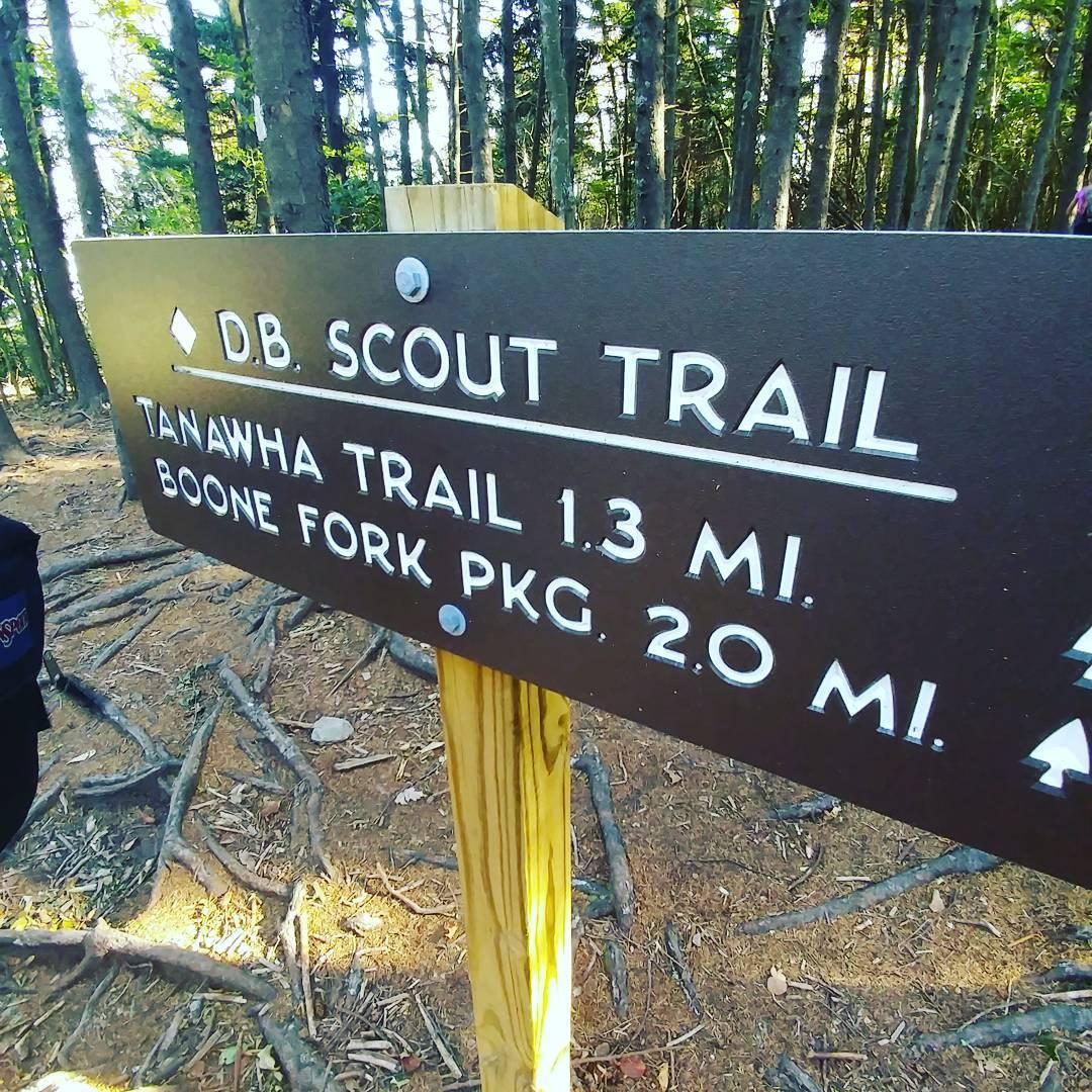 Asheville Hikes - Daniel Boone Scout Trail - Original Photo