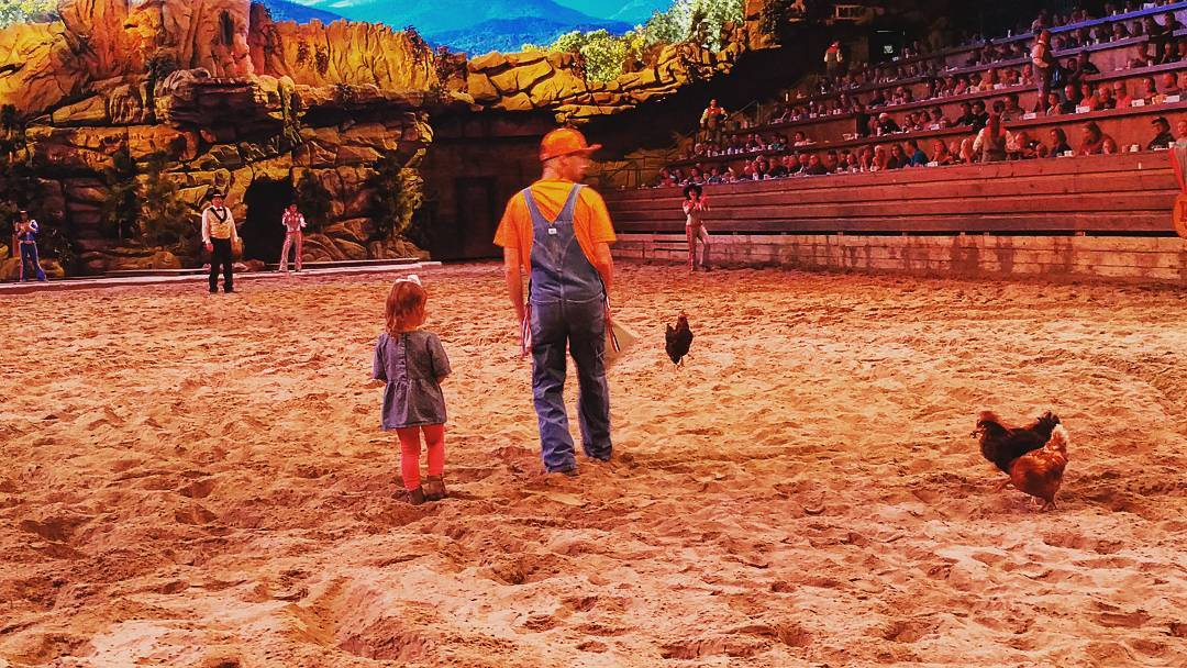 Pigeon Forge Things To Do - Dolly Parton's Stampede - Original Photo