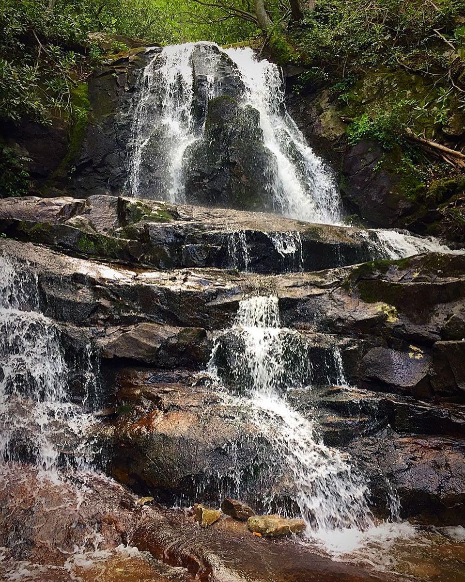 Laurel Falls Trail