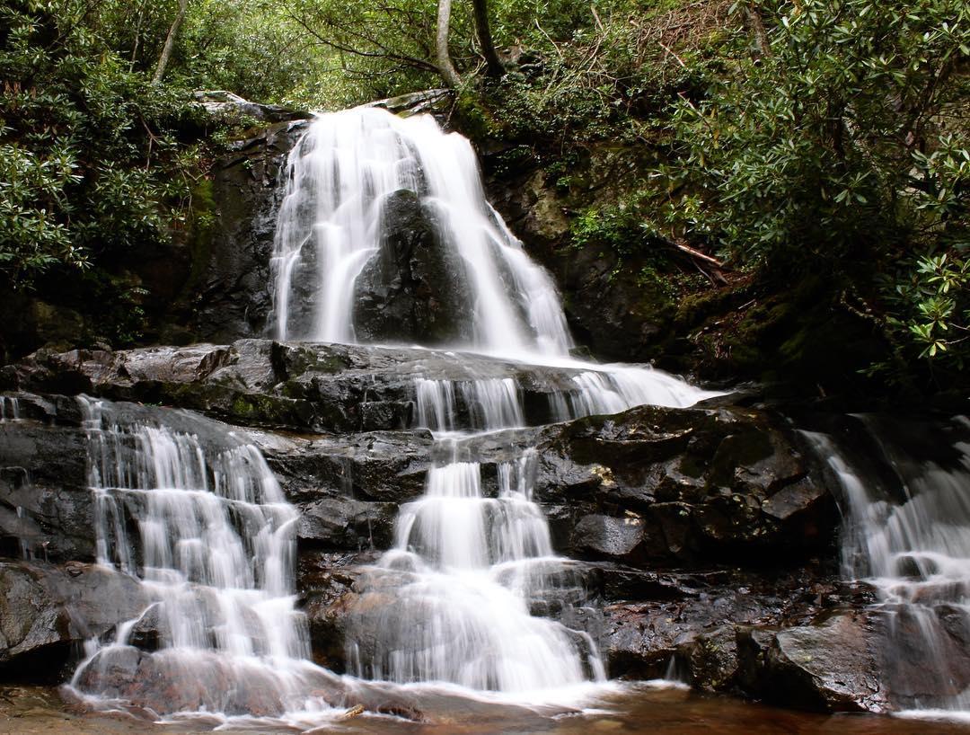 National Park Hikes - Laurel Falls Trail - Original Photo