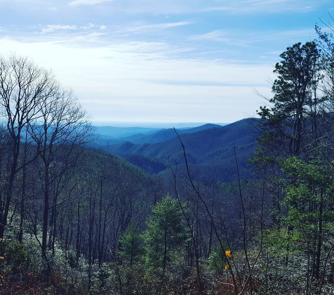Asheville Hikes - Little Bearwallow Trail - Original Photo