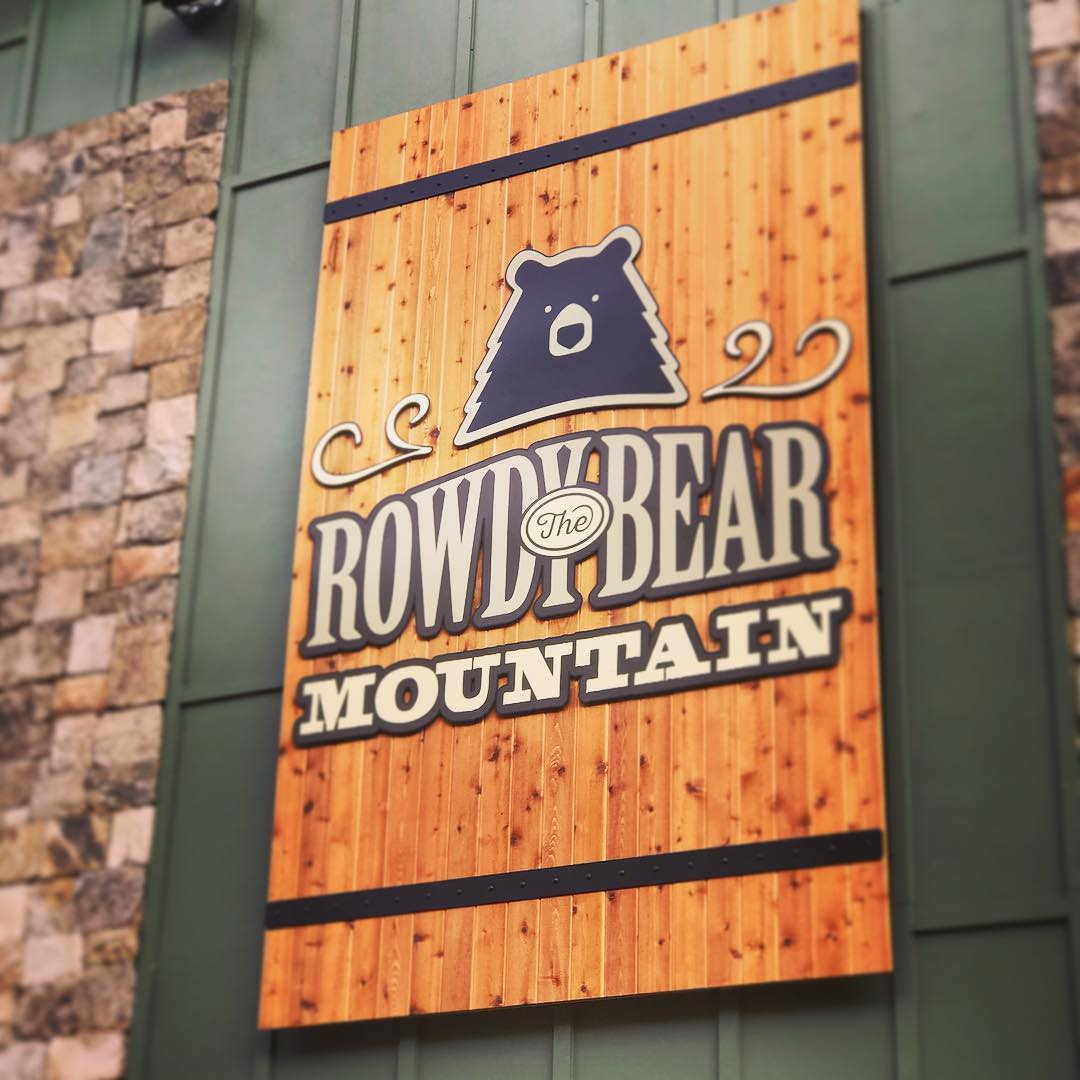 Gatlinburg Things To Do - Rowdy Bear Mountain Coaster - Original Photo