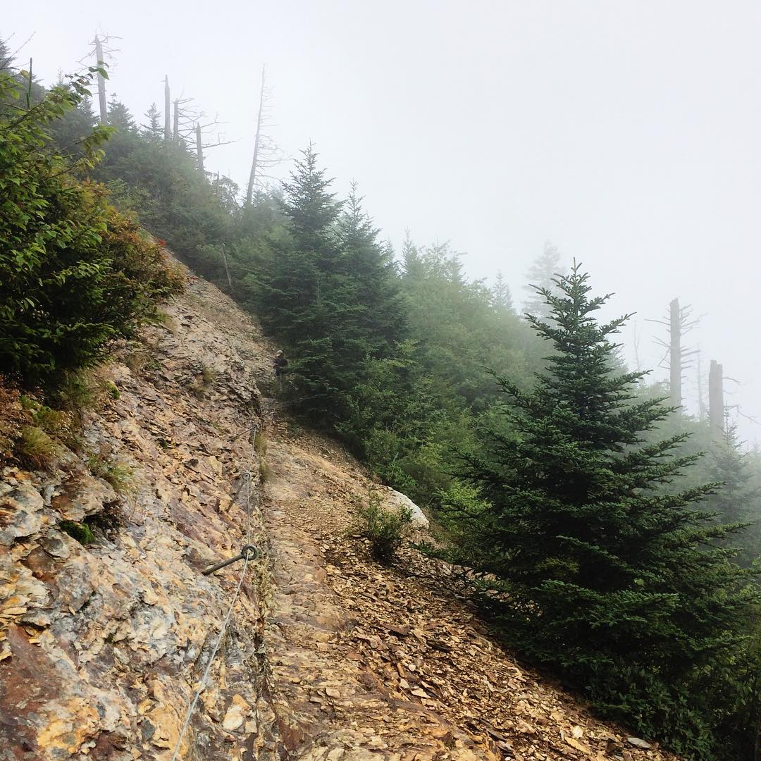 National Park Hikes - The Boulevard Trail to Mount LeConte - Original Photo