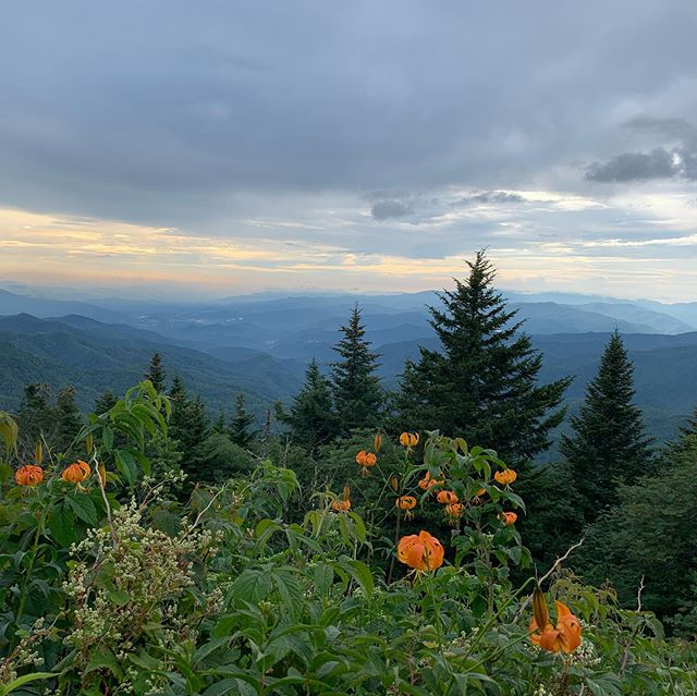 Asheville Hikes - Waterrock Knob - Original Photo