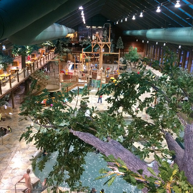 Gatlinburg Things To Do - Wild Bear Falls Water Park - Original Photo