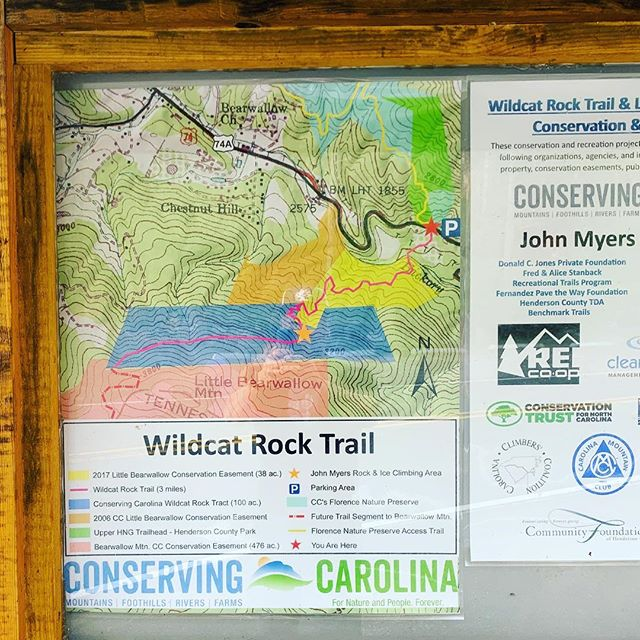 Asheville Hikes - Wildcat Rock Trail - Original Photo