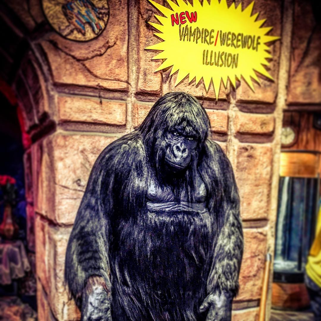 Gatlinburg Things To Do - World of Illusions - Original Photo