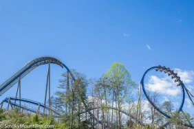 Dollywood - The Wild Eagle
