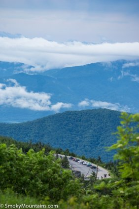 All - Clingmans Dome: Highest Point in Tennessee