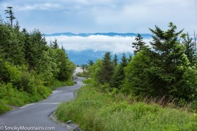 All - Clingmans Dome Hike