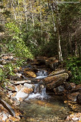 National Park - Alum Cave Trail to Mount LeConte