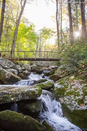 All - Rainbow Falls Trail to Mount LeConte