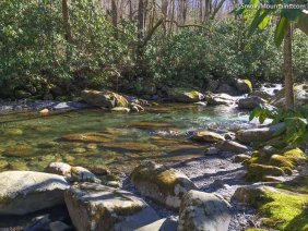 National Park - Porters Creek Trail: Beautiful & Peaceful Hike