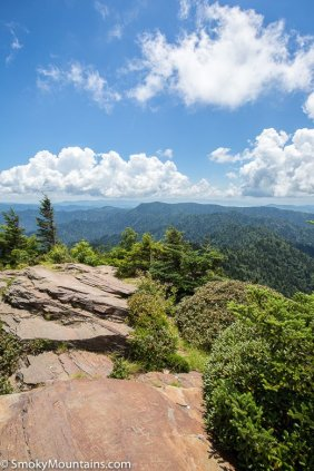 All - Trillium Gap Trail to Mount LeConte