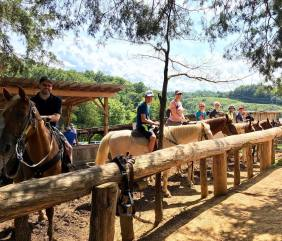 Sevierville - Jayell Ranch Zip Lines & Horseback Riding