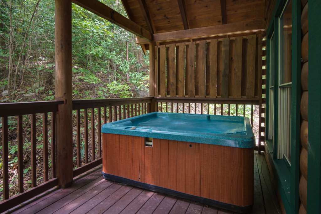 Photo of a Pigeon Forge Cabin named Black Paw - This is the sixteenth photo in the set.