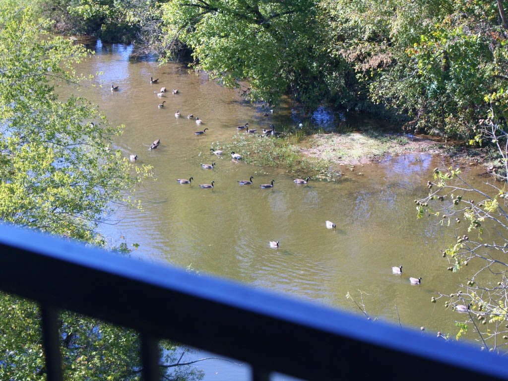 Photo of a Pigeon Forge Condo named River Crossing 501 - This is the twelfth photo in the set.