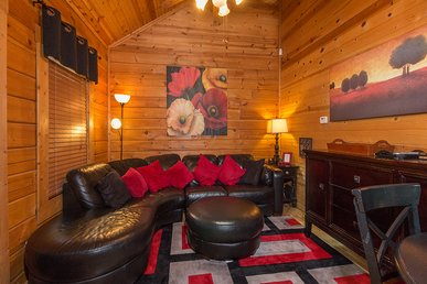 Snuggle Bear, 1 Bedroom, Pet Friendly, Hot Tub, Wifi, Pool, Sleeps 2
