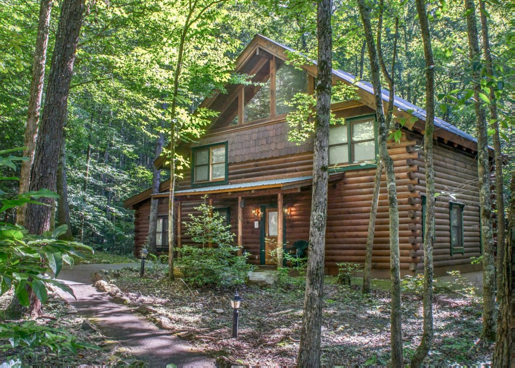 Photo of a Pigeon Forge Cabin named A Rustic Elegance #4 - This is the first photo in the set.