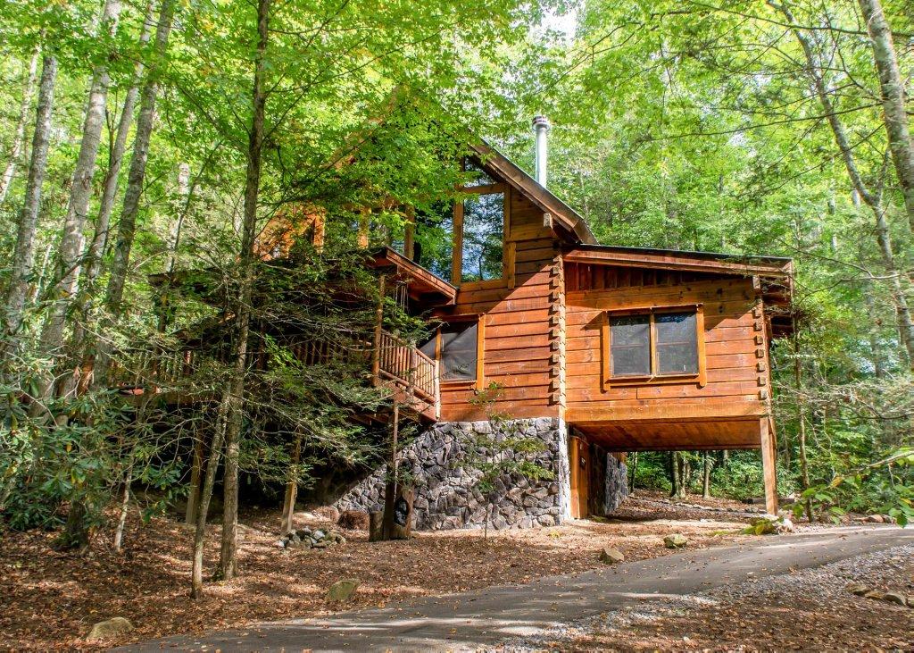 Bear paw trail 15 cabin in sevierville w 2 br sleeps6 for Cabin rental companies in gatlinburg tn