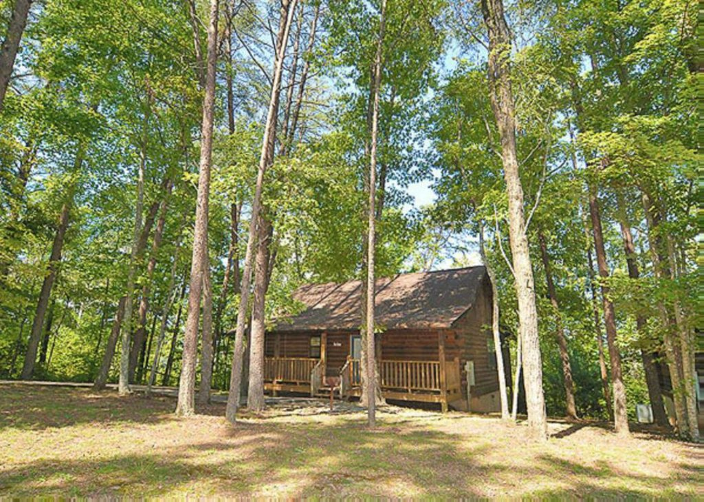 Photo of a Pigeon Forge Chalet named A Hen House - This is the second photo in the set.