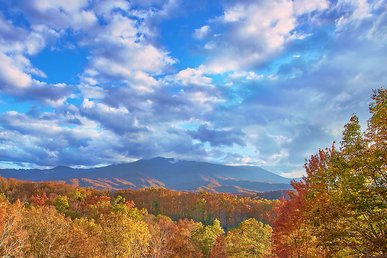 4 BR Theater Cabin with Mountain Views and Fantastic Location - Sleeps 14