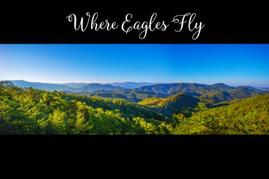 Breathtaking Setting To Experience The Beauty Of The Smokies!
