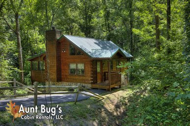 Private 1 Bedroom Smoky Mountain cabin in a wooded setting!