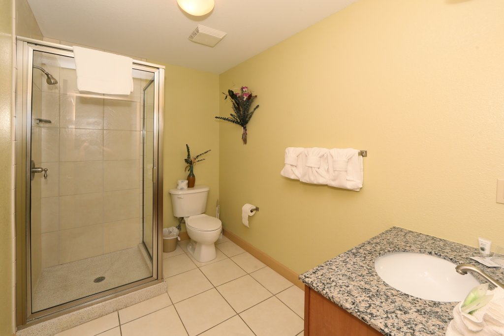 Photo of a Pigeon Forge Condo named Mountain View Condo 3507 - This is the twenty-second photo in the set.