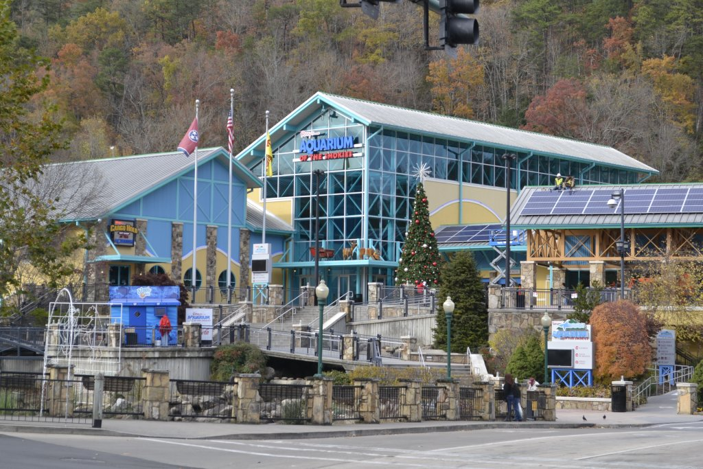 Photo of a Pigeon Forge Cabin named Mountain Movie Inn - This is the fortieth photo in the set.