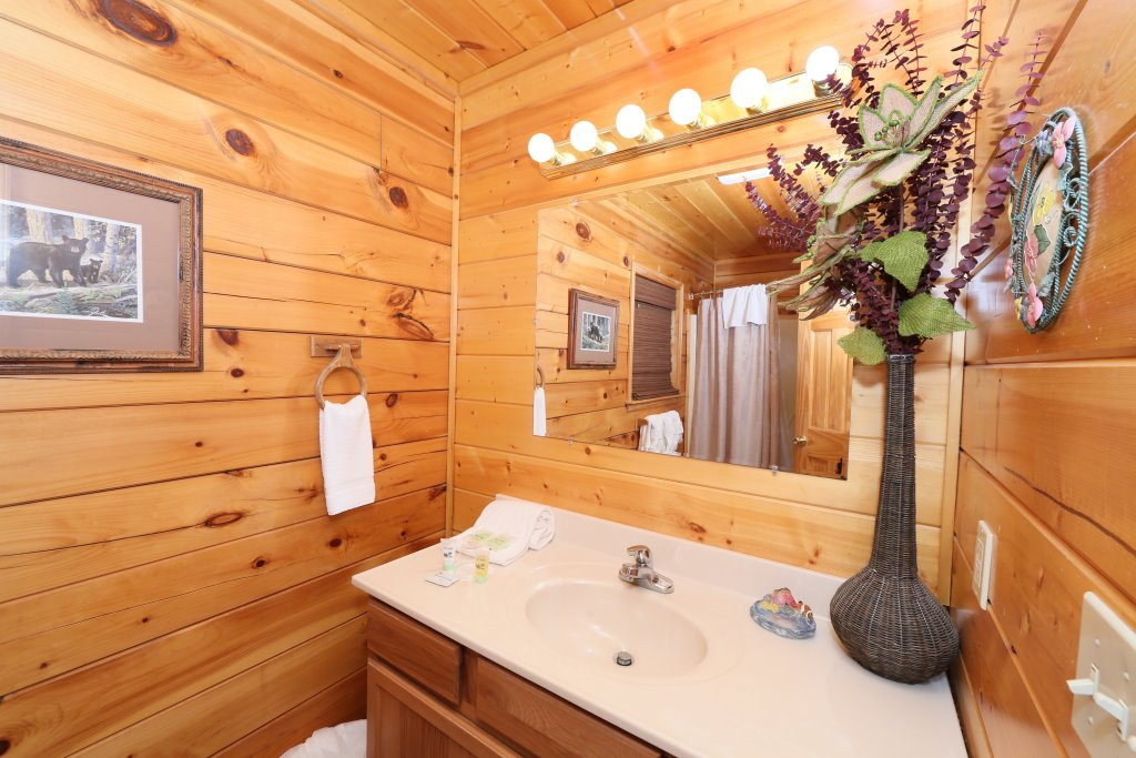Photo of a Pigeon Forge Cabin named Drift Away - This is the fifteenth photo in the set.