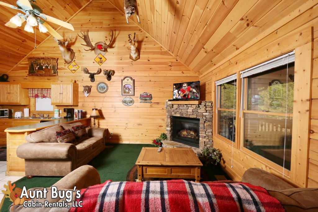 Photo of a Pigeon Forge Cabin named Shades Of The Past #230 - This is the eighteenth photo in the set.