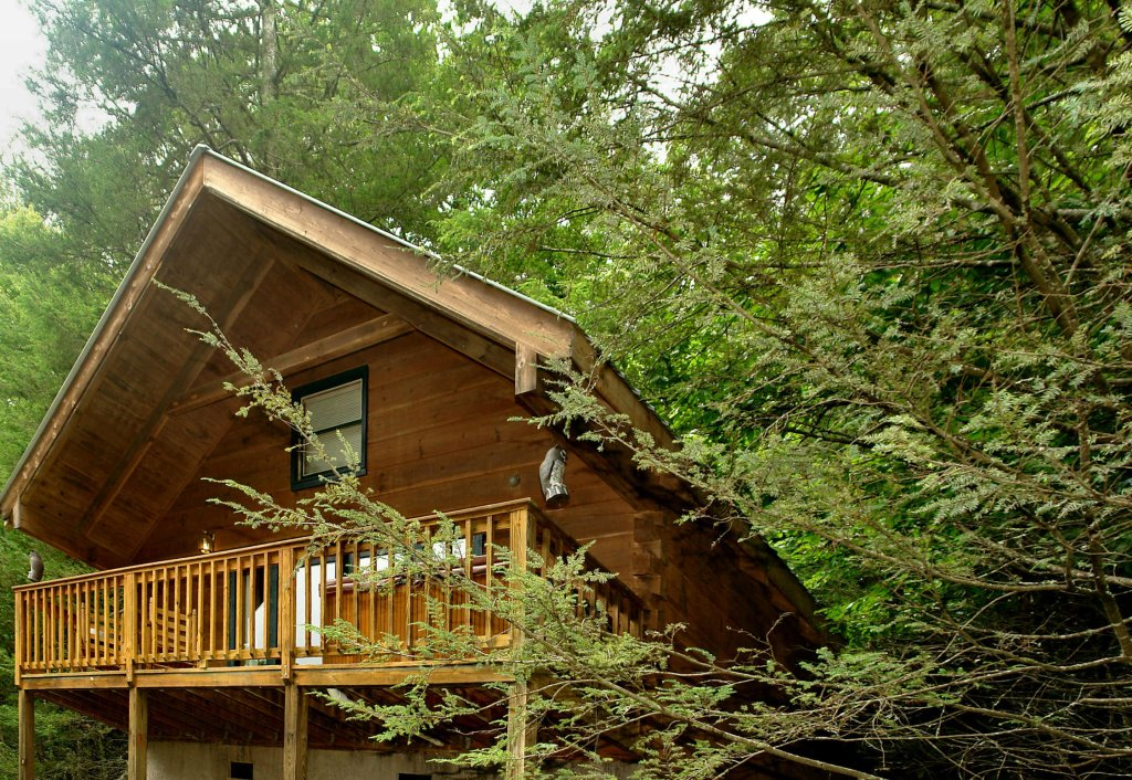 Photo of a Gatlinburg Cabin named Wild Thing #1525 - This is the first photo in the set.
