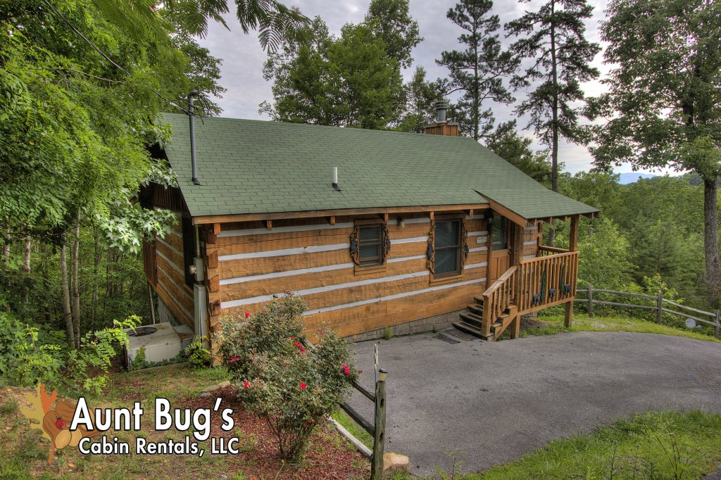Photo of a Pigeon Forge Cabin named Apple Bear View #116 - This is the thirty-third photo in the set.
