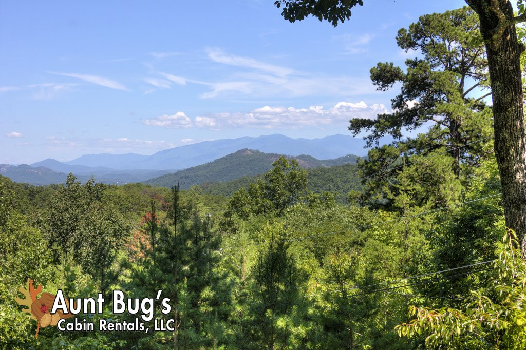Photo of a Pigeon Forge Cabin named Apple Bear View #116 - This is the eighth photo in the set.