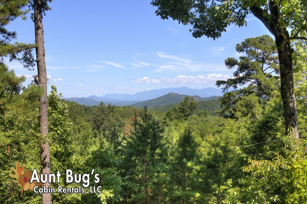 Photo of a Pigeon Forge Cabin named Apple Bear View #116 - This is the fourth photo in the set.