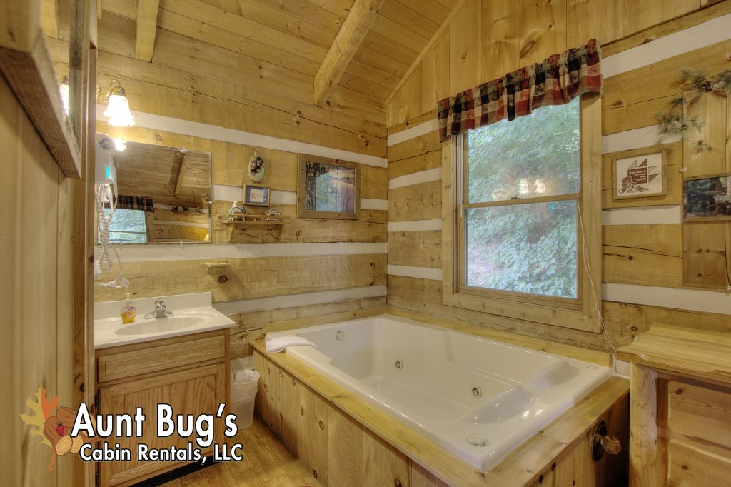 Photo of a Pigeon Forge Cabin named Apple Bear View #116 - This is the twenty-ninth photo in the set.