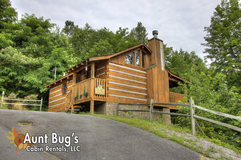 Photo of a Pigeon Forge Cabin named Apple Bear View #116 - This is the first photo in the set.