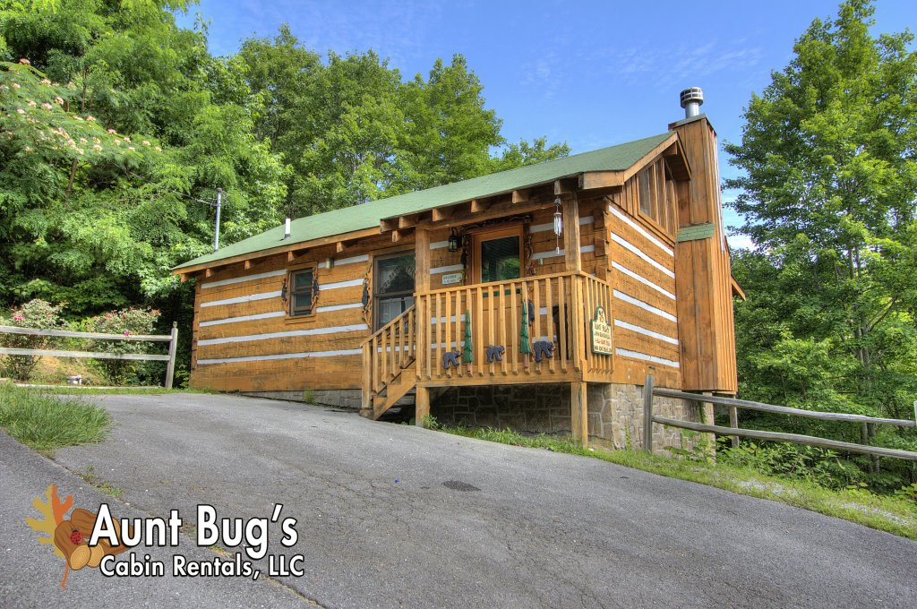 Photo of a Pigeon Forge Cabin named Apple Bear View #116 - This is the second photo in the set.