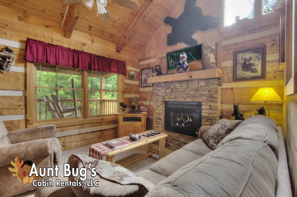 Photo of a Pigeon Forge Cabin named Apple Bear View #116 - This is the twenty-eighth photo in the set.