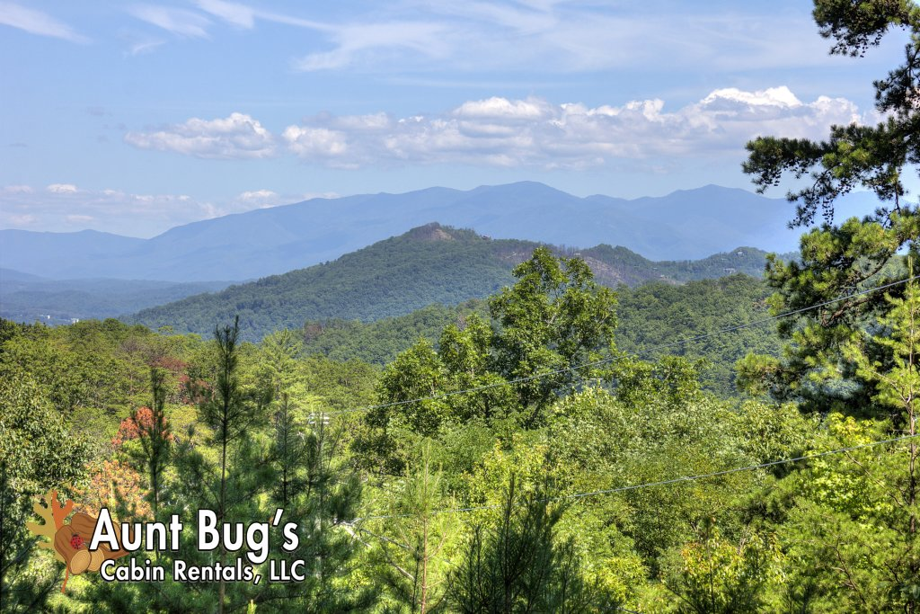 Photo of a Pigeon Forge Cabin named Apple Bear View #116 - This is the twelfth photo in the set.