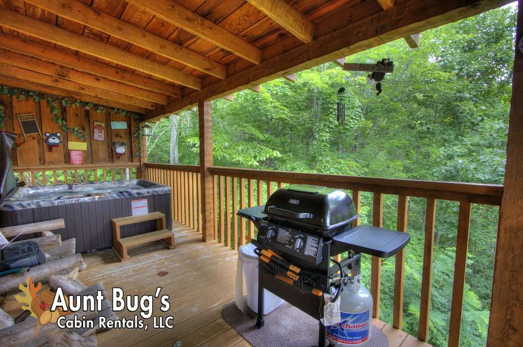 Photo of a Pigeon Forge Cabin named Apple Bear View #116 - This is the seventh photo in the set.