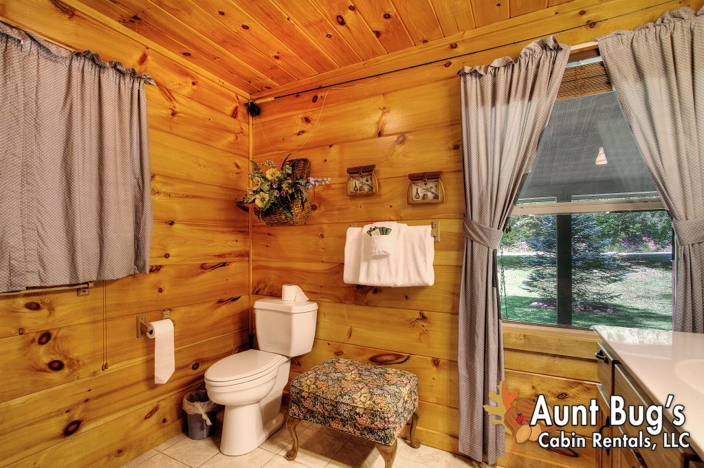 Photo of a Gatlinburg Cabin named Living Waters #376 - This is the seventy-sixth photo in the set.