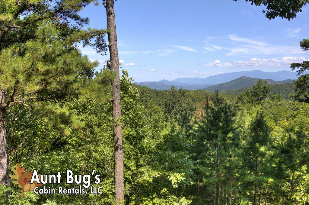 Photo of a Pigeon Forge Cabin named Apple Bear View #116 - This is the fifth photo in the set.