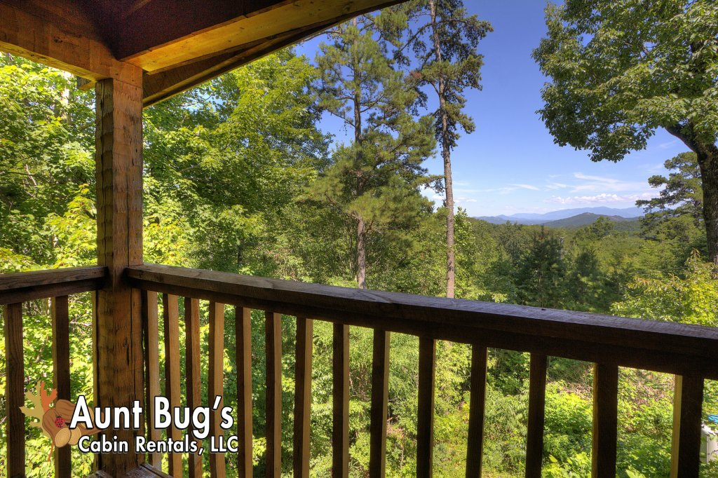 Photo of a Pigeon Forge Cabin named Apple Bear View #116 - This is the eleventh photo in the set.