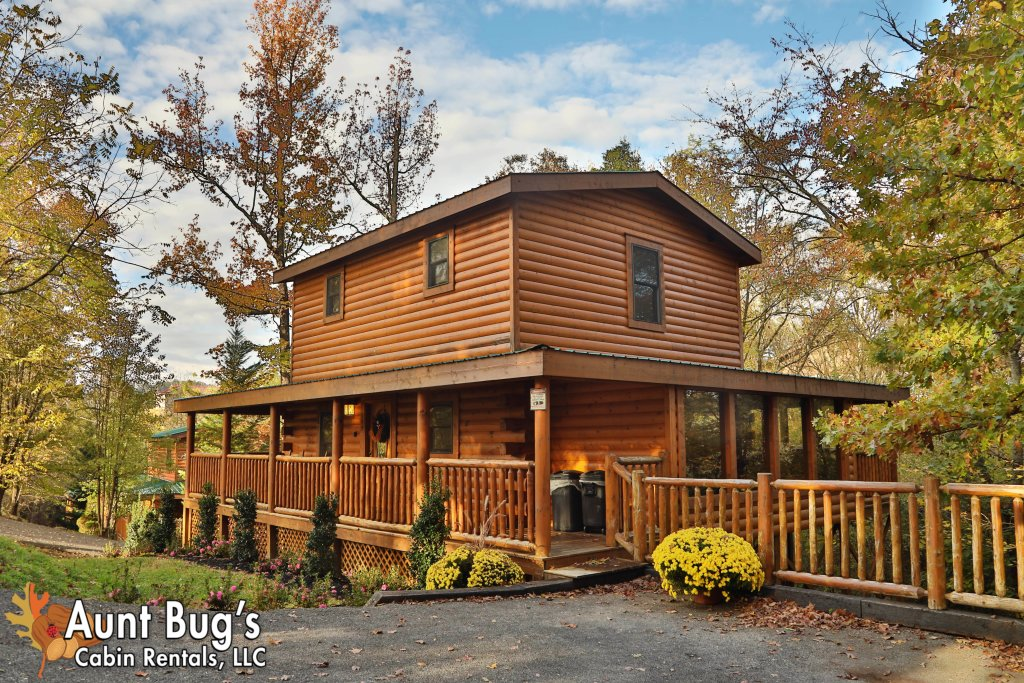 Photo of a Pigeon Forge Cabin named Skinny Dippin' #261 - This is the fourth photo in the set.