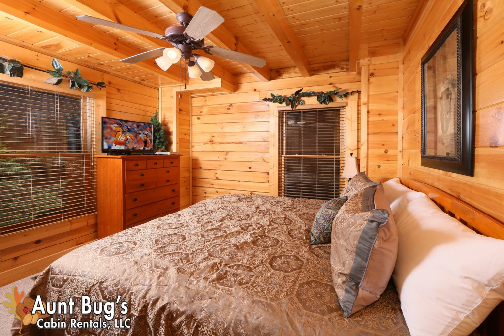 Photo of a Pigeon Forge Cabin named Big Daddy Bear #545 - This is the thirty-fourth photo in the set.