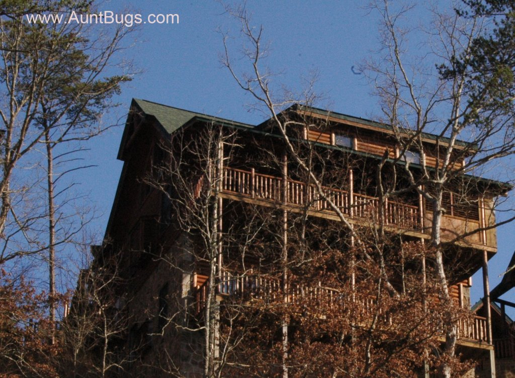 Photo of a Pigeon Forge Cabin named Big Daddy Bear #545 - This is the forty-sixth photo in the set.