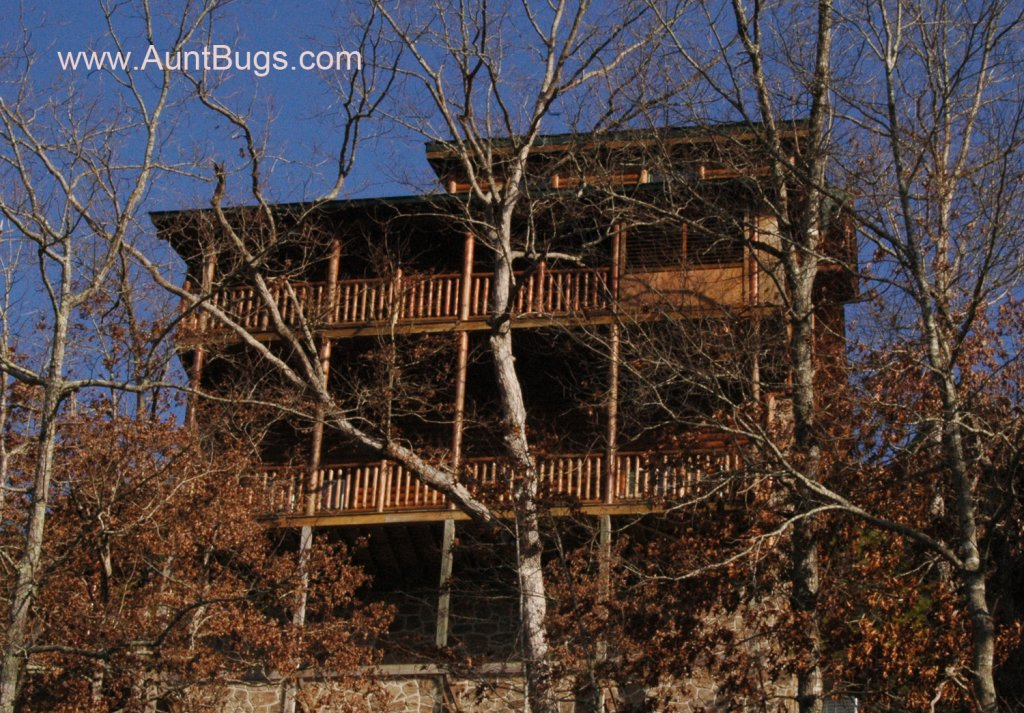 Photo of a Pigeon Forge Cabin named Big Daddy Bear #545 - This is the forty-seventh photo in the set.